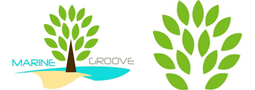Students of SZABIST Move and Groove to Plant Mangroves