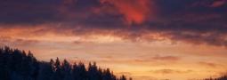 Transient Dawn